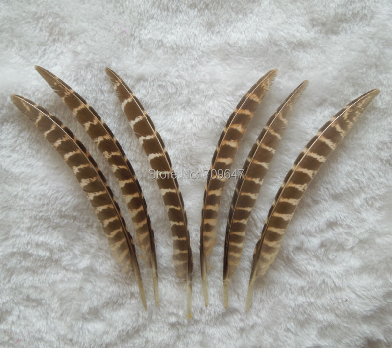 100Pcs/LOT,10-15CM NATURAL Hen Ringneck Pheasant Wing Feathers,Hen Ringneck Pheasant Point Quills, Art Project Decorate Costume